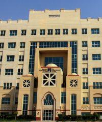 THE BRITISH UNIVERSITY IN DUBAI