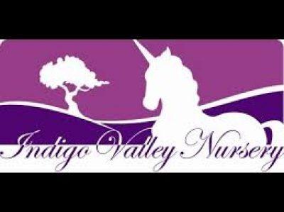Indigo Valley Nursery